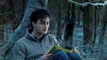Lot 118: Harry Potter and the Deathly Hallows: Part 1 (2010) - Harry Potter (Daniel Radcliffe) Worn Sweater