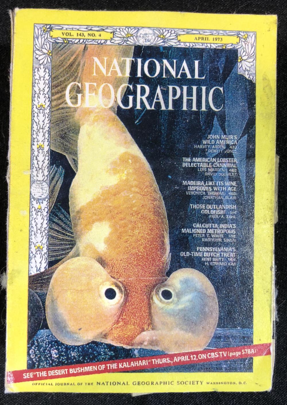Honey I Blew Up the Kid (1992) - Miniature National Geographic Magazine Set