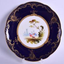 Early 20th c. Coalport  plate painted and signed by F. Howard with two exotic birds in landscape with blue and gilt border and raised gilt central border