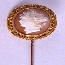 A MID 19TH CENTURY GOLD MOUNTED CAMEO TIE PIN within a fitted case. 10 cm long.