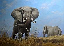 Jock Elmsley (1910-1980) British, oil on canvas, 'Elephants', 3ft 8ins x 2f
