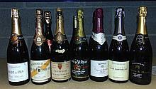 12 BOTTLES OF SPARKLING WINE. (12)