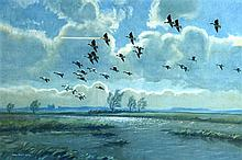 PETER SCOTT (1945), A Framed Print, Geese in Flight. 1 ft 2ins x 1 ft 8ins.