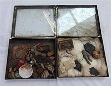 TWO CASES, containing numerous fossils and shells. (2)
