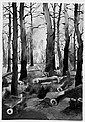 Christian Arnold Fuerth 1889 - 1960 Bremen clearing. Water color. 1927. 53,6: 37.1 cm. Monogrammiert and dates. Michael 1212. - view of the Lichtung of a forest with the trunks of cleared trees which are because of the soil. - developed 1927, a time,