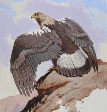 "Spirit of the North By John Swatsley Eagle Print Image Size 15/"" x 20/"""