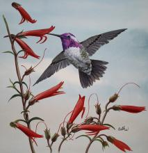 Scarlet Tanager by Don Balke