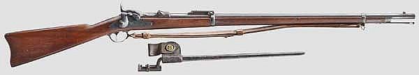 Springfield Mod. 1873, mit Dillenbajonett