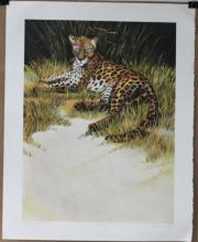 Lithograph Limited Edition Signed and Numbered Dated 79
