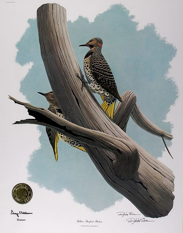 Richard Sloan, (American, b. 1935), Yellow-Shafted Flicker, together with five other prints (from the Governor''s State Bird Prints Ser