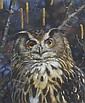 Carl Brenders, (Belgian, b. 1937), Owl, Carl Brenders, Click for value