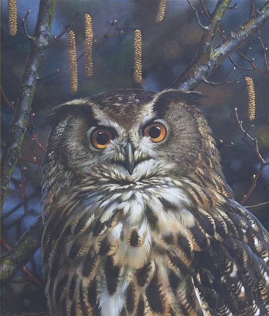 Carl Brenders, (Belgian, b. 1937), Owl