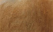 Lee Elyse Crouse Weiss, (Wisconsin, b. 1928), Amber Grasses, 1971