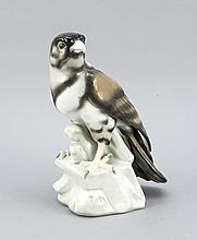 Großer Falke, Thüringen, 20. Jh., auf einem Felsbrocken stehender Falke, naturalistisch staffiert in Unterglasurfarben, H. 24,5 cm