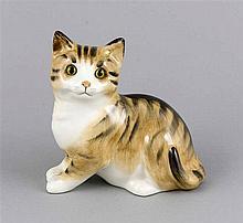 Katze, Stoke-on-Trent, England, polychrom staffiert in naturalistischen Far