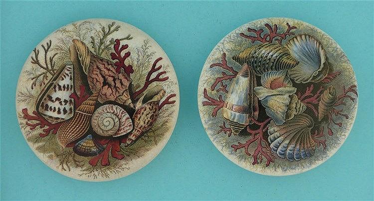 Shells (52B) and (52J) (2)    pot lid, pot lids, potlid, potlids, prattware