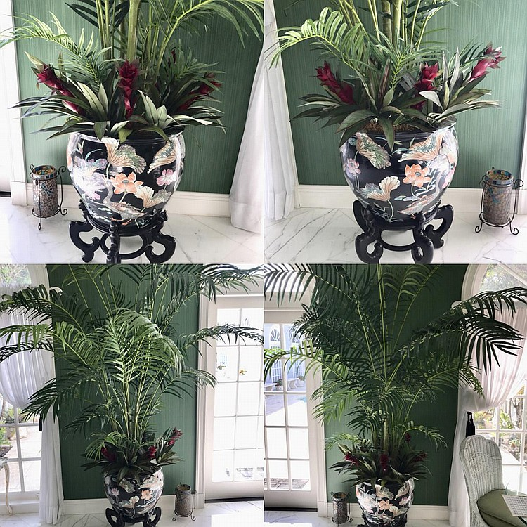 """Pair of Chinese Porcelain Cache Pots Raised on Custom Wood Stands - Also includes silk palm trees - Polychromed geese and pond foliage with a black background. Condition: Good, with no visible damage. Dimensions: Pots - 16"""" H x 19"""" diameter."""