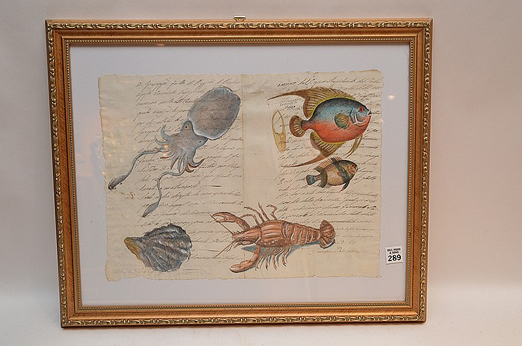 Italian, assorted sea life, hand painted on early 19th century hand written documents, image size 12 ½ x 16 ½ ""