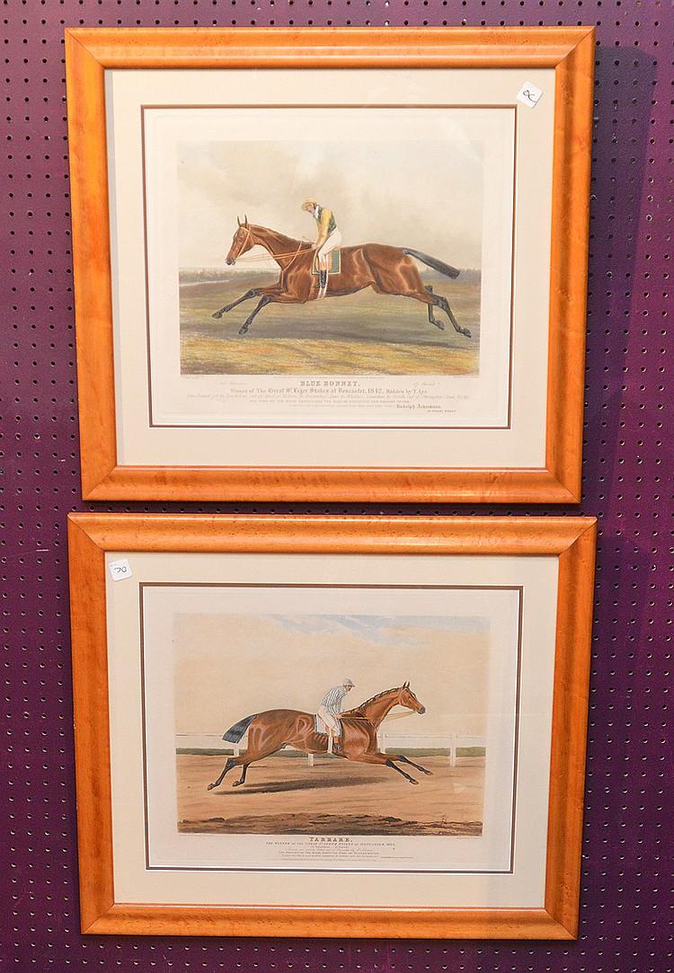 Pr. Horse Print Engravings, Tarrare & Blue Bonnett, 25in x 29in. In maple frames