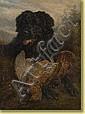 Samuel Carter (1835-1892) École anglaiseHuile sur, Samuel John Carter, Click for value