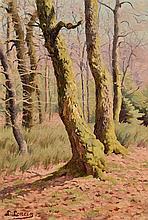 """Louis LONCIN (Durbuy 1875 - Waulsort 1946) """"Sous-bois en automne"""
