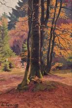 Paysage arboré Huile sur toile signée en bas à gauche. Au revers, date 'nov[em]bre 23, pour 1923. Dim : 56 x 38 cm