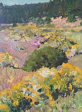 Walt Gonske, Chamisa in Bloom