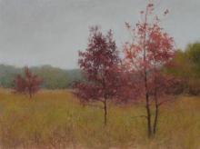 Denise Mahlke, Fall Flame