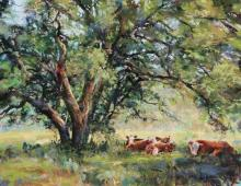 Clive Tyler, Hill Country Haven