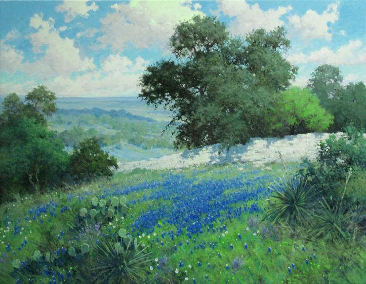 Robert Pummill, Hill Country Splendor