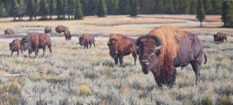 Lindsay Scott, Yellowstone Sageland