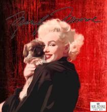 Marylin Monroe:   Dog's Don't Bite Me, Men Do