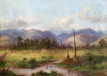William George Baker 1864 - 1929 - Near Matarawa,