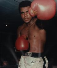 ALI MUHAMMAD: (1942-2016) American Boxer, World Heavyweight Champion. Large signed colour 16 x 19 photograph of Ali standing in a half-length pose in a boxing ring, during a training session in a gym. Signed ('Muhammad Ali') in bold black ink with his name alone to a clear area at the base of the image. About EX