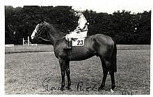 HORSE RACING: Selection of signed postcard