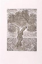 FRANCISCO SQUARE. Linoleum on paper