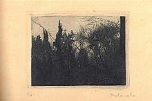 ROLANDO CAMPOS. Engraving
