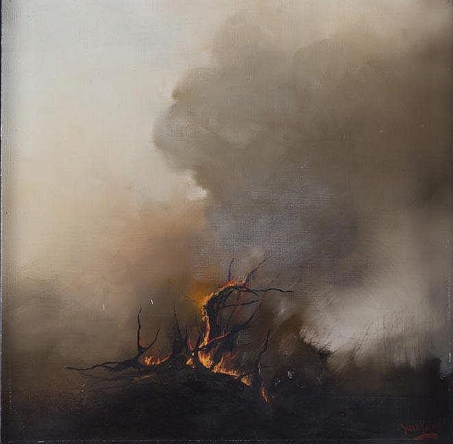 JUAN ROLDÁN - FIRE