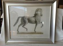 Framed Cavallo Horse Engraving Print After Canova