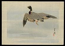 Ogata Gekko - Woodblock