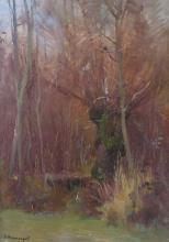HERMANJAT Abraham Jacques Élie, 1862-1932 [CH]. Sous bois, huile sur cart
