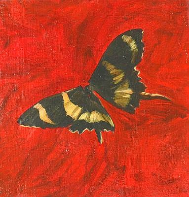 JULIA CICCARONE (1967 - ) #12 Butterfly, 1994