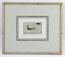 Morn, Cerith Seashell, Etching