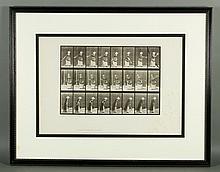 19th C. Eadweard Muybridge Collotype Print