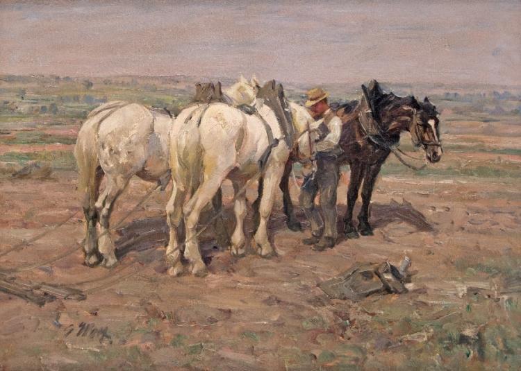 Beim Anspannen der Pferde