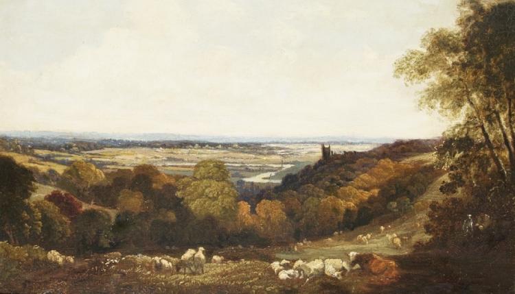 Englische Waldlandschaft