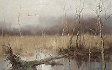 Wildenten im Moor