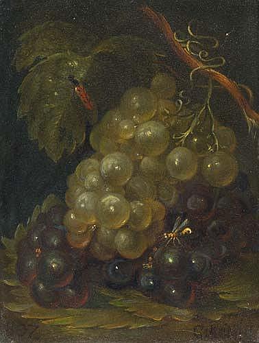 CATHARINA TREU (verehel. KÖNIG)  Früchtestillleben mit hellen und dunklen Trauben.