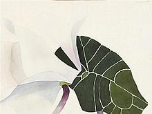 Reiner Wagner – Blüte und Blatt
