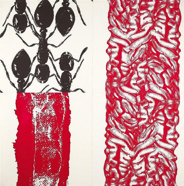 Peter Kogler – Ameisen